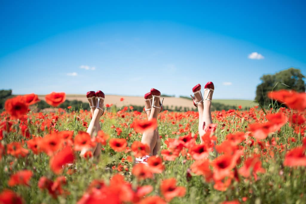 The Victory Sisters in a poppy field